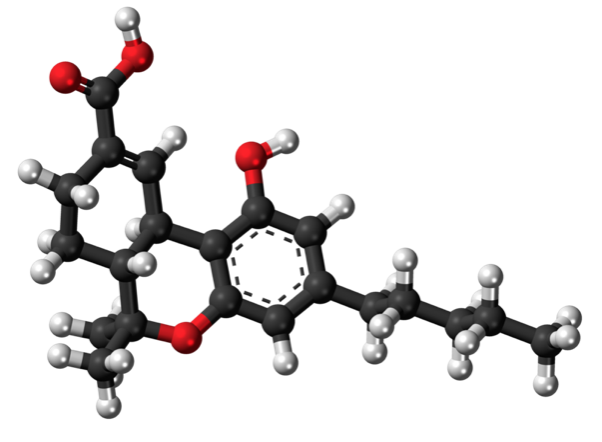 THC - the most infamous of hemp molecules, and why I got into being a hemp writer